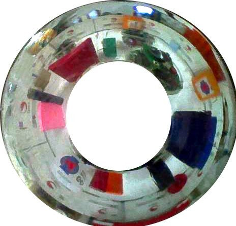 Raw (circular) image from Omnivision mirror