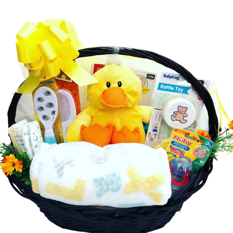 Welcome to the World! Baby Gift Basket