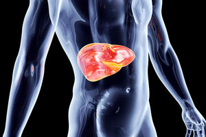 Do you need a Liver Detox? 6 signs your liver needs help