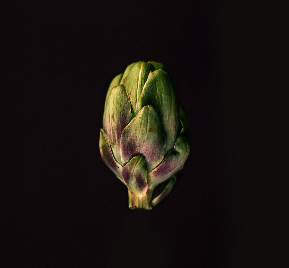 Artichoke, fine art print, food photography