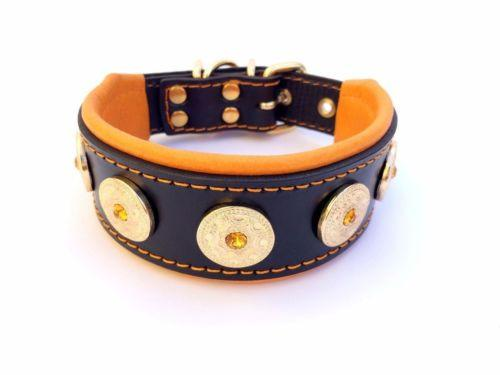 Bestia dog collar with studs
