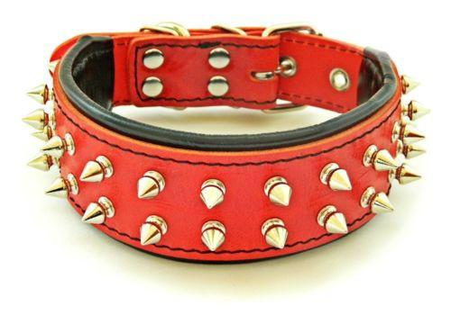 French Bulldog leather dog collar from Bestia