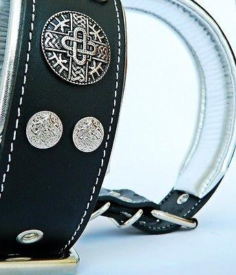 studded dog collars from Bestia