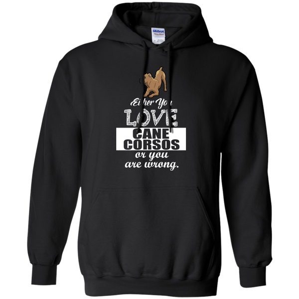 Love or Be Wrong Pullover Hoodie