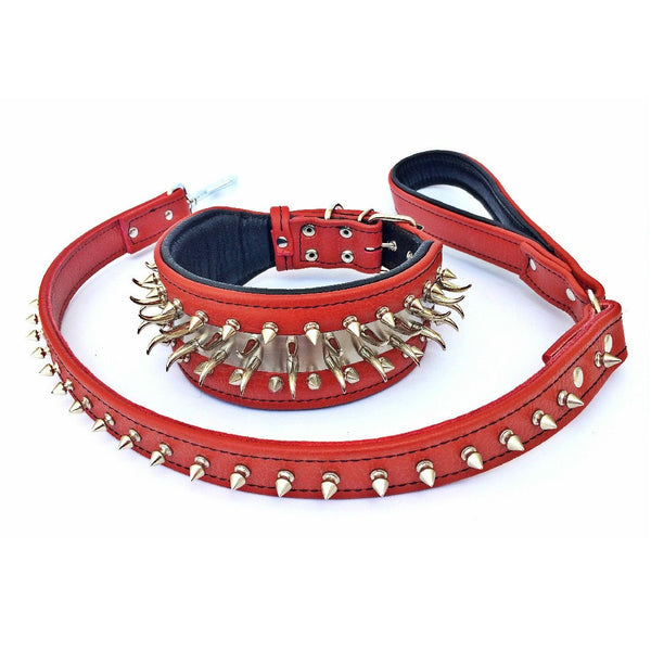 Bestia bid dog spiked and studded dog collar set