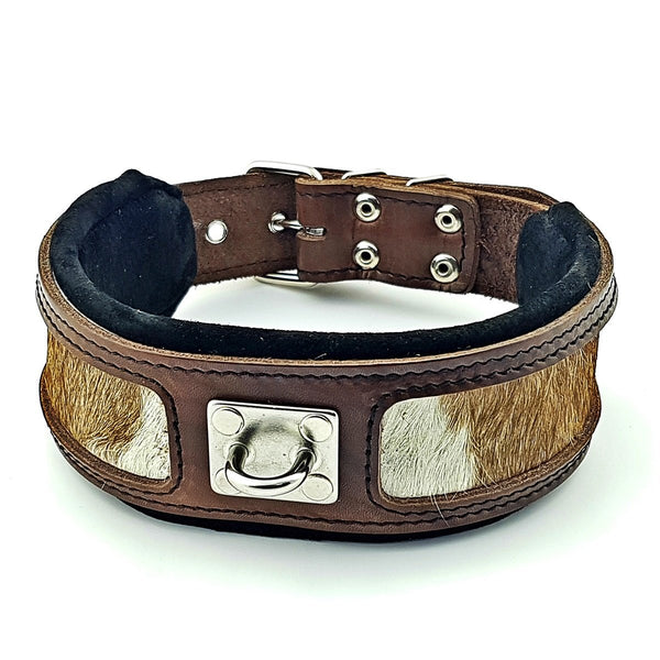 Bestia Buffalo dog collar out of Buffalo skin