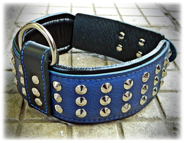 Bestia blue dog collar with studs