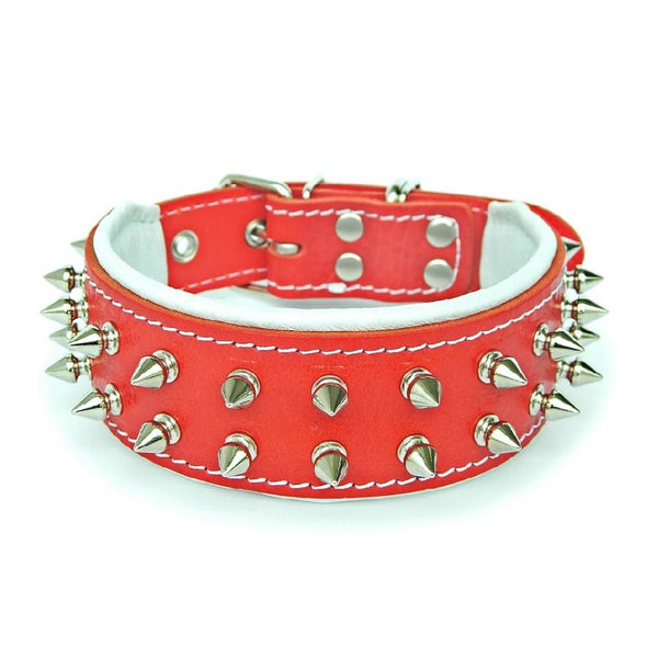 French Bulldog hand made dog collar