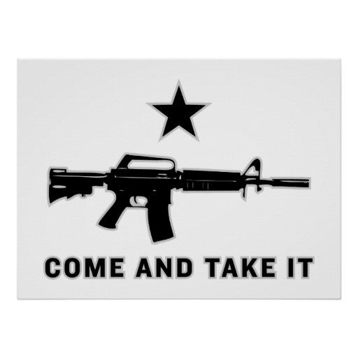 Come and Take It 3'x5' Polyester Flag