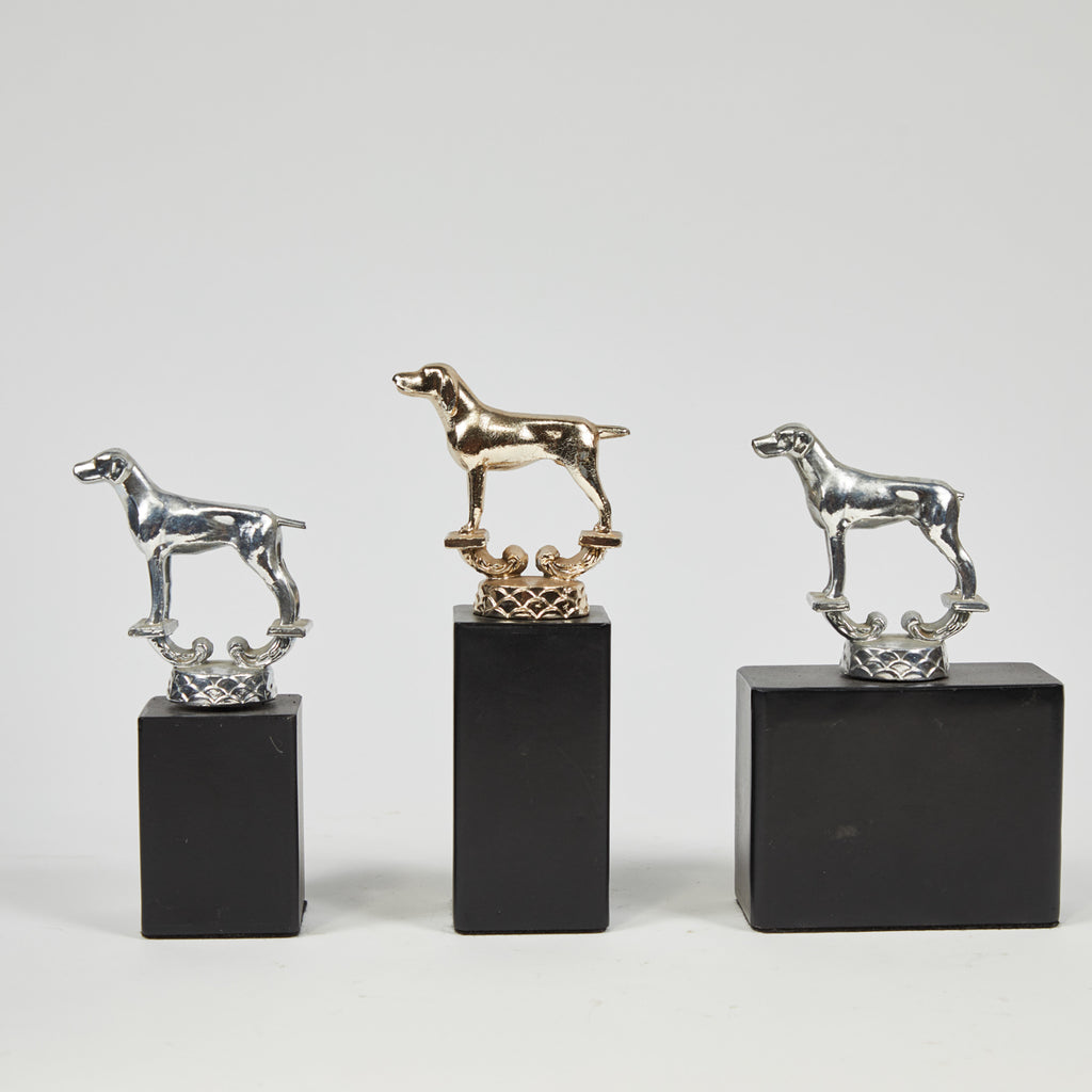 MOUNTED MODELS OF DOGS