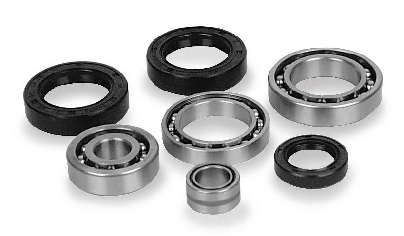 Differential Bearing and Seal Kit, 414291