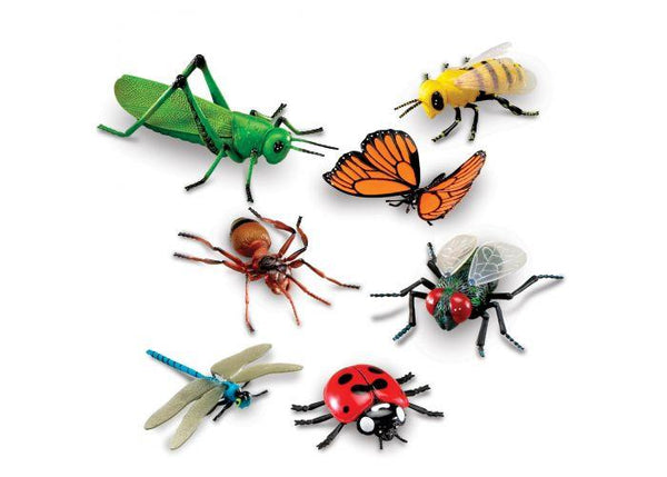INSECTOS GIGANTES - JUMBO INSECTS