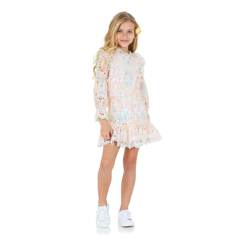 Amelia Embroidered Dress