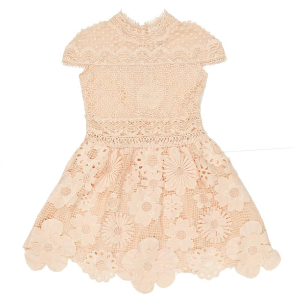 Valentina Lace Dress_ Blush