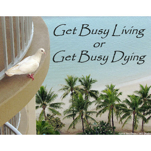 Inspirational Giclee Glossy Print  Get Busy Living or Get Busy Dying  Shawshank