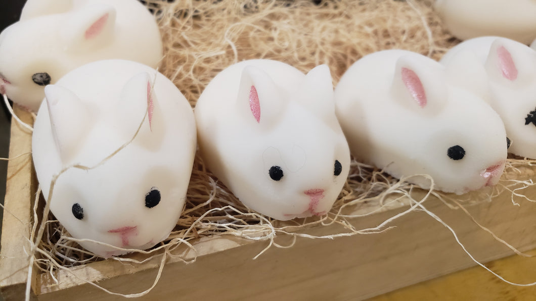 Goat's Milk Soap Baby Bunnies!!