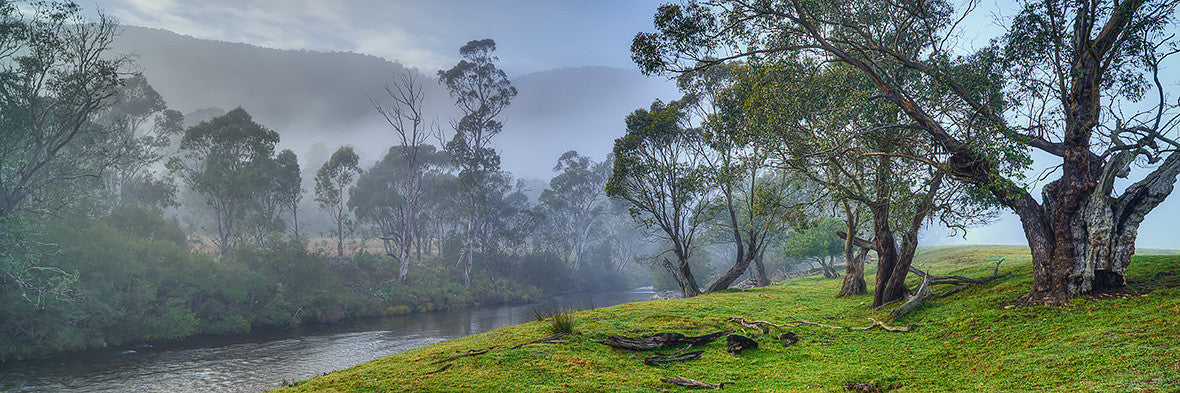 Morning fog, upper Murray River