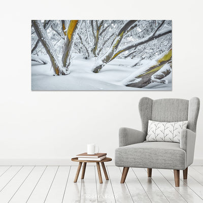 After The Storm - Snow Gums wall art in room example