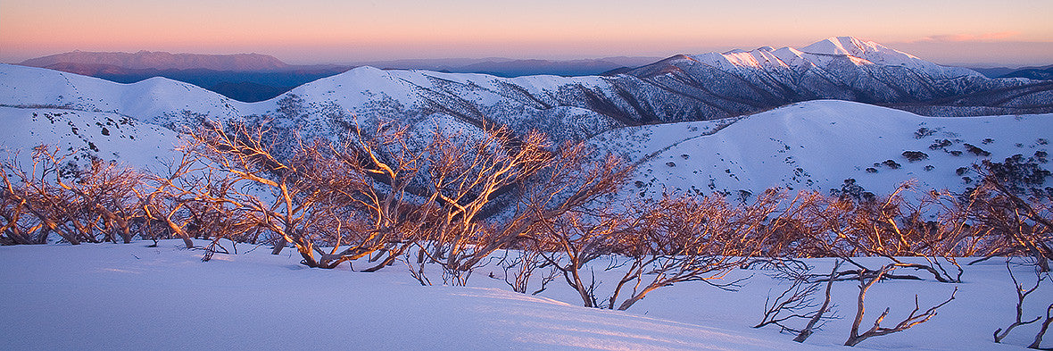 Alpine Sunrise - Alpine National Park
