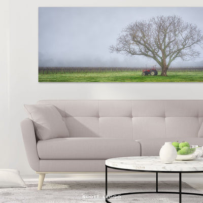 Amongst The Vines - Canvas wall art preview