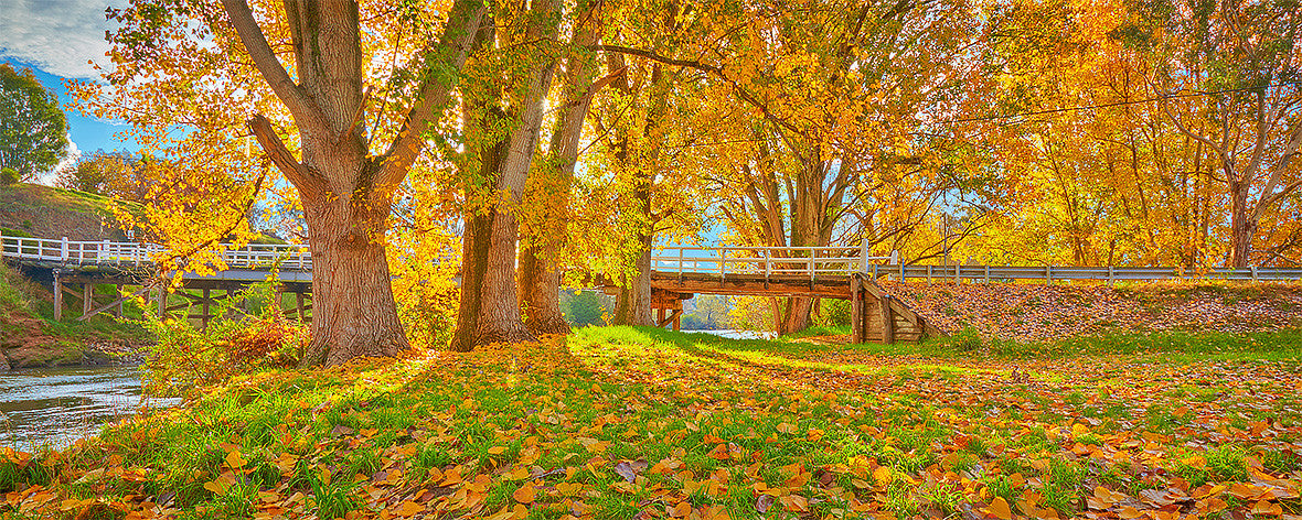 Autumn by the Murray River