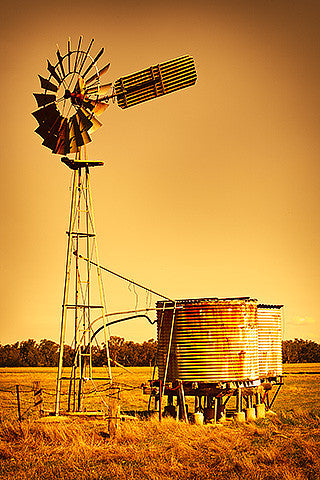 Golden Windmill