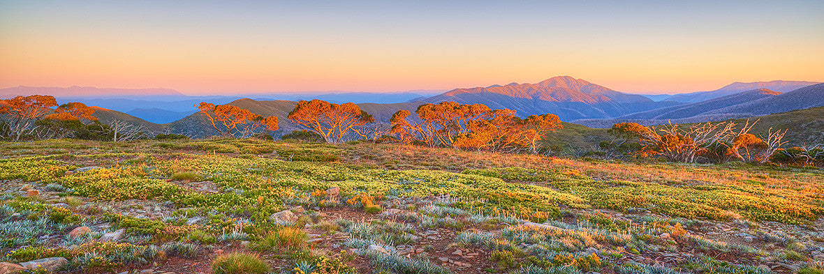 Day Break Mount Feathertop Sunrise Alpine National Park