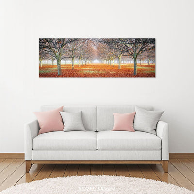 Emergent - Canvas Wall Art preview
