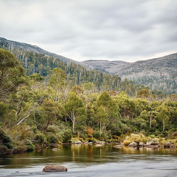 Escape To Nature - Thredbo River Kosciuszko National Park