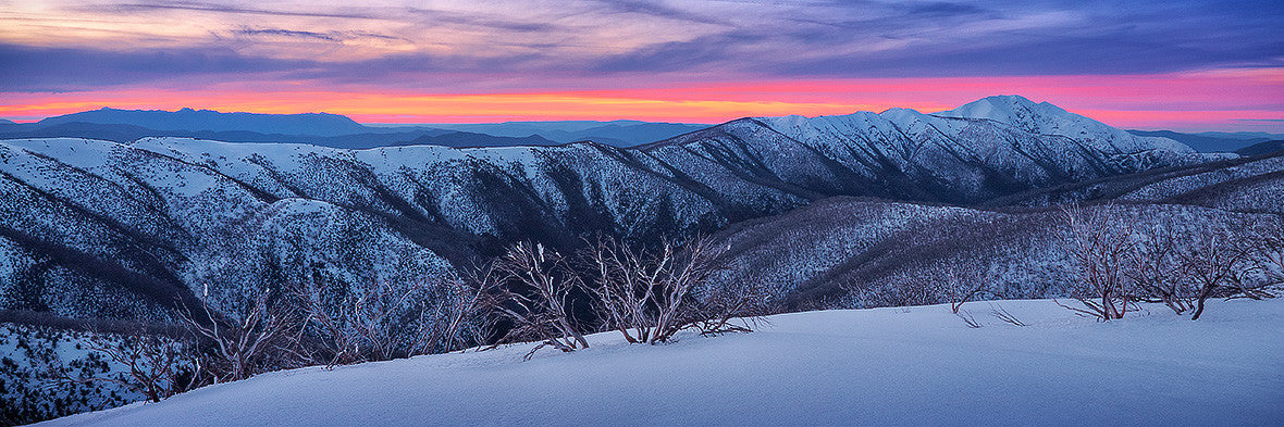 Evening Glory - Alpine National Park