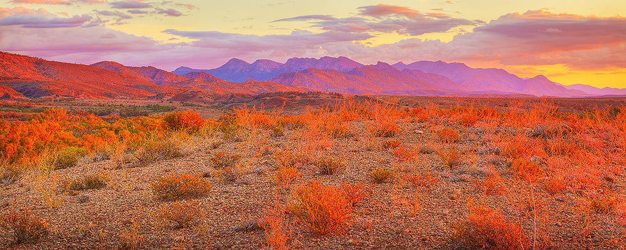 Lighting The Flinders - Flinders Ranges South Australia