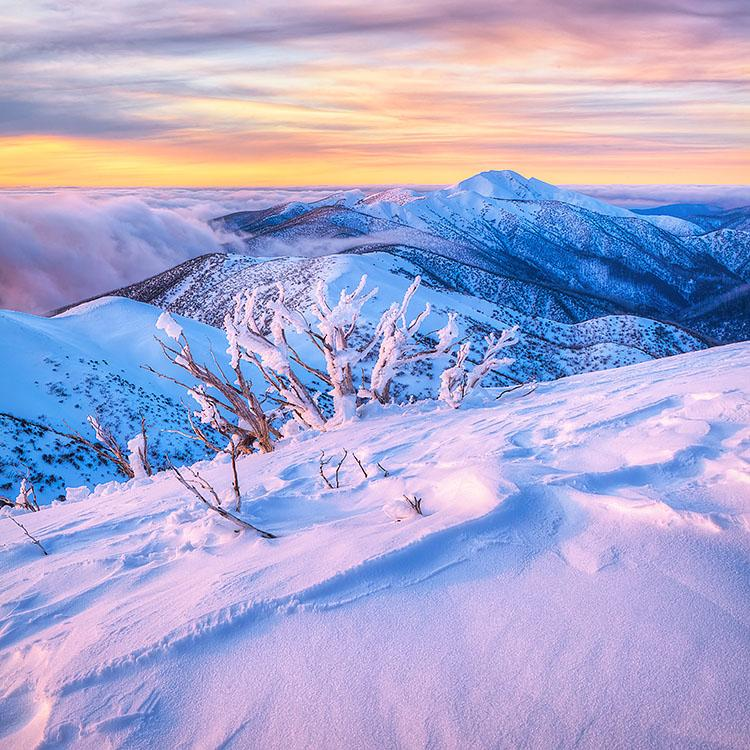 Memories Of Winter - photograph from Mount Hotham