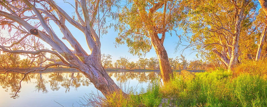 Sunrise over the Murray River, South Australia