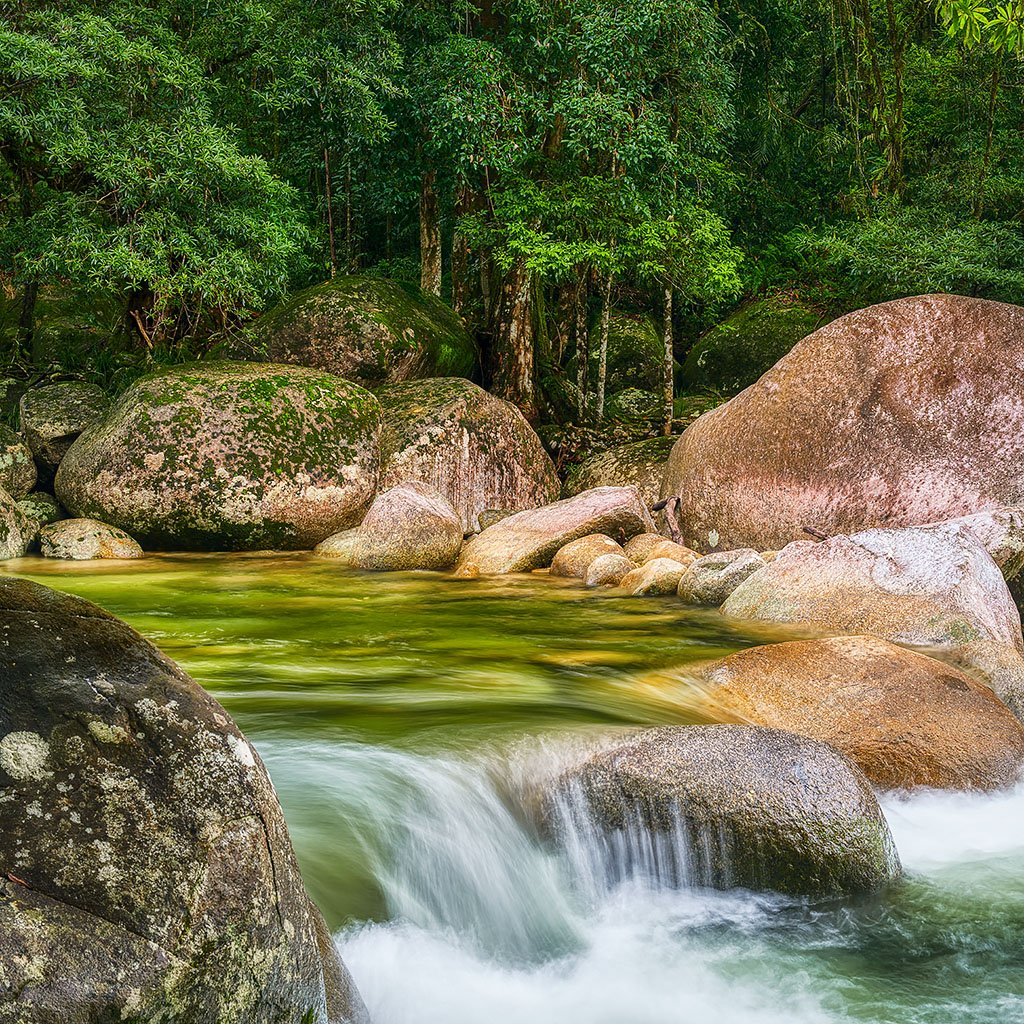 Rainforest Rocks - Mossman Gorge, Daintree National Park