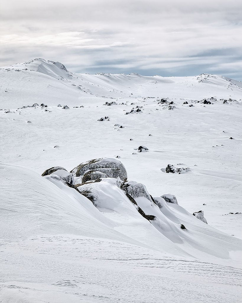 Etheridge Lines - Etheridge Ridge, Kosciuszko National Park