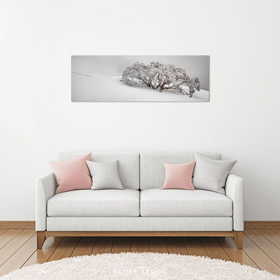 Snow Solitude - Canvas Wall Art preview