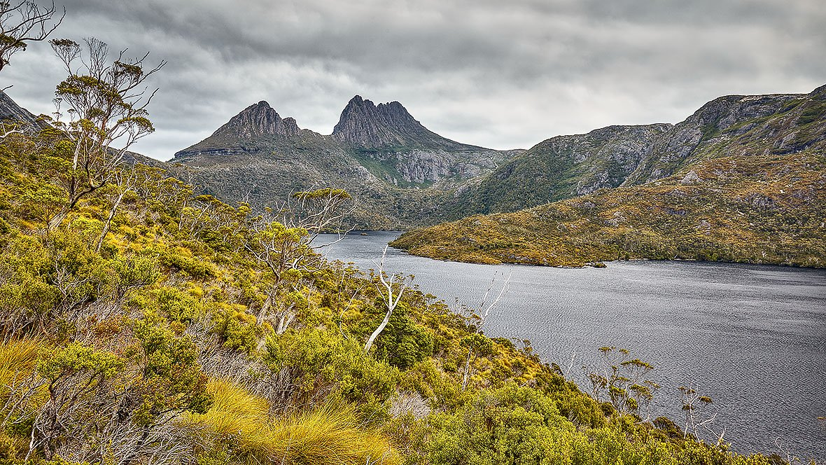 Stormy Wilderness - Cradle Mountain Tasmania
