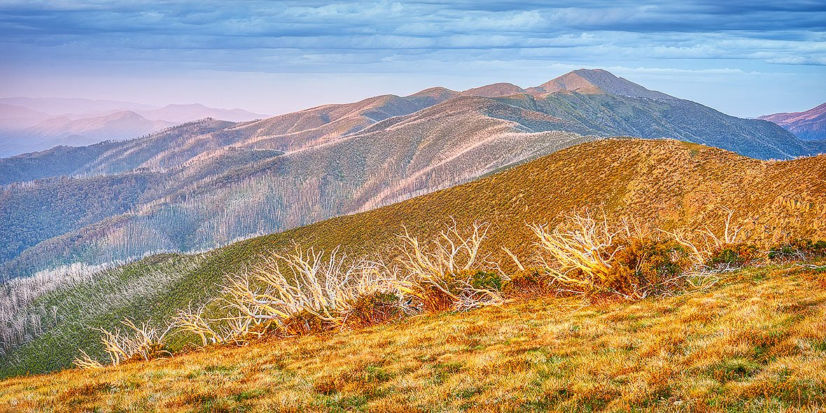Summer Light - The Razorback to Mount Feathertop
