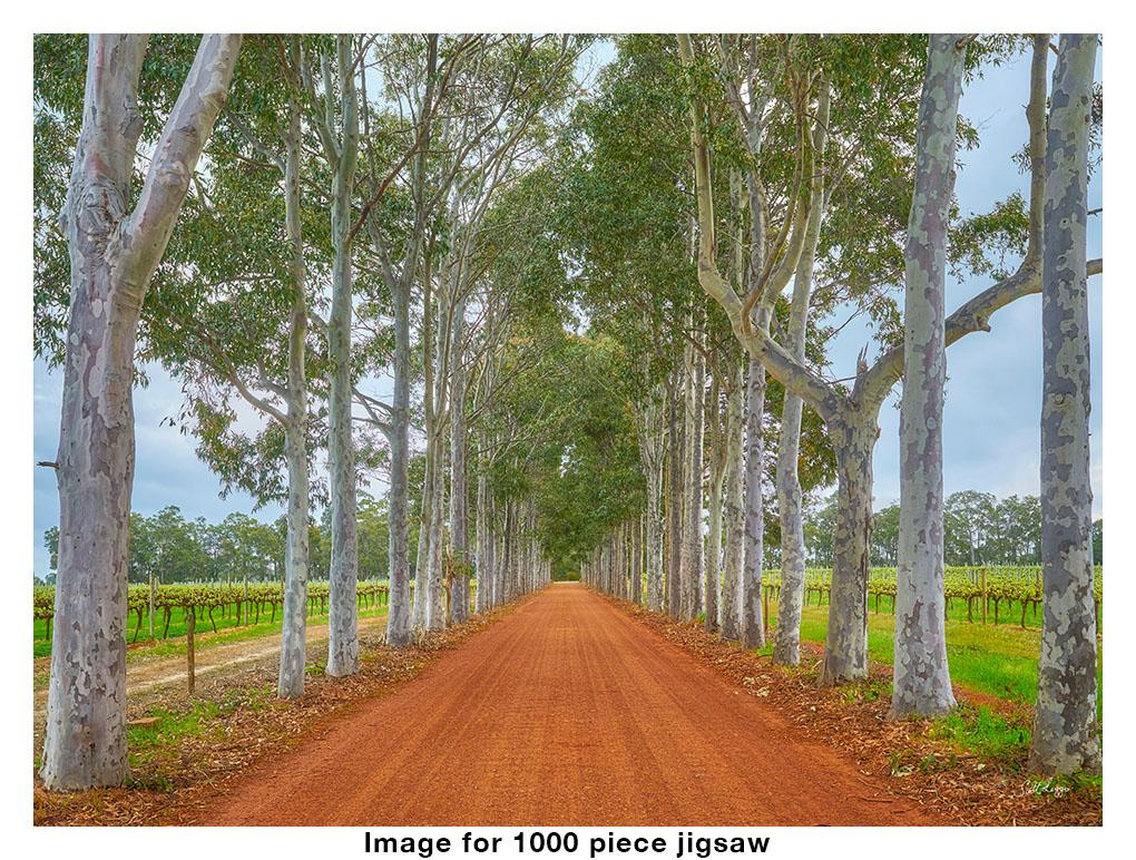 The Entrance - 1000 piece Australian made jigsaw puzzle