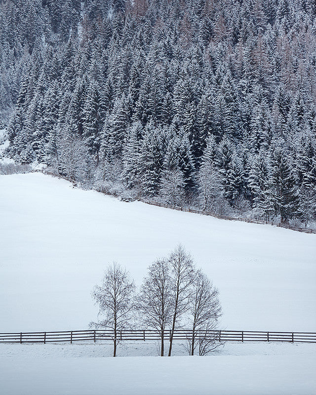 Winter snow in Stubai Valley, Tyrol, Austria