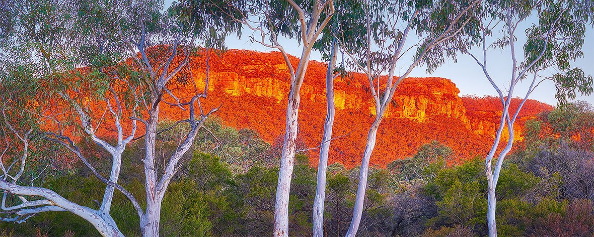 Sunset on cliffs of the Blue Mountains