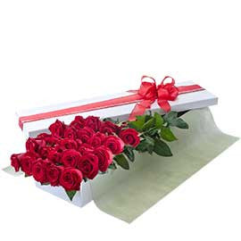 24 Premium Colombian Red Roses Presentation Box