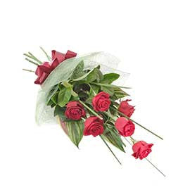 6 Long Stemmed Premium Colombian Red Roses Bouquet