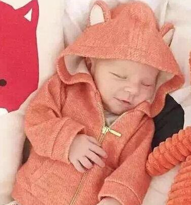 Baby Fox Zip up Hoodie
