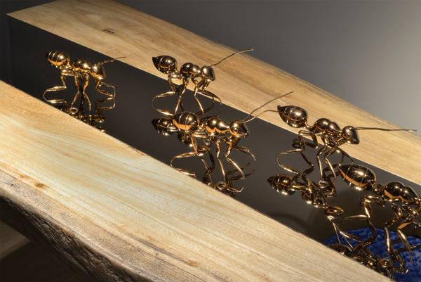 Copper Ant - Home Accessories & Decor - 5mm Design Store London