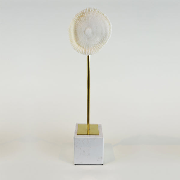 Coral Burst - Tall view 1 - Decorative Object / Sculpture. Ivory Colour. Faux Coral home decor. Marble base. Materials: Sandstone, Carrara Marble, Nickel Plated Steel. Available in two sizes: Short, Tall. Short dimensions: W13 D8 H33cm. Tall dimensions: W13 D8 H40cm. bathroom home accessories. nature theme home decor. Designer gift. Each coral ornament is unique and may differ in shape and size from the displayed image. Small – Medium size Sculpture / Ornament for styling shelves, niches and display units.