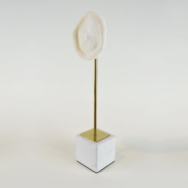 Coral Burst - Tall view 2 - Decorative Object / Sculpture. Ivory Colour. Faux Coral home decor. Marble base. Materials: Sandstone, Carrara Marble, Nickel Plated Steel. Available in two sizes: Short, Tall. Short dimensions: W13 D8 H33cm. Tall dimensions: W13 D8 H40cm. bathroom home accessories. nature theme home decor. Designer gift. Each coral ornament is unique and may differ in shape and size from the displayed image. Small – Medium size Sculpture / Ornament for styling shelves, niches and display units.