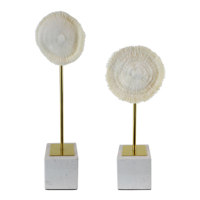 Coral Burst - Set - Decorative Object / Sculpture. Ivory Colour. Faux Coral home decor. Marble base. Materials: Sandstone, Carrara Marble, Nickel Plated Steel. Available in two sizes: Short, Tall. Short dimensions: W13 D8 H33cm. Tall dimensions: W13 D8 H4