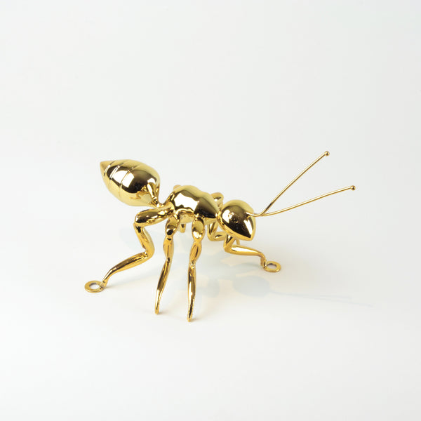 Gold Ant - View 2 - Best seller. Decorative Object / Sculpture. Gold Colour. Ant Decorative object. Can be used as a free standing ornament or wall decor. The Ant feet contains fixtures that allowed the sculpture to be hung on the wall and used as a sculptural wall art. Materials: Nickel plated steel. Dimensions: W16 D7.5 H8cm. Insect theme home accessories. Use several ants to create a wall art installation. Use single ant ornament to style coffee table books. Top Interior design trend.