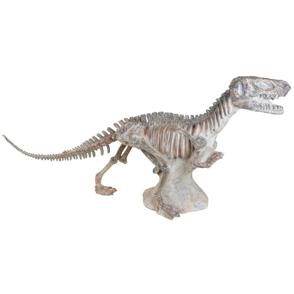T-Rex Fossil - Dinosaur Sculptures & Decor - 5mm Design Store London